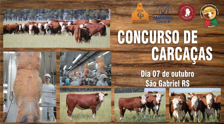 CONCURSO DE CARCAÇAS 2015 jpeg